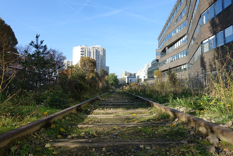 A stretch of the Petite Ceinture in the 13th arrondissement, now a park